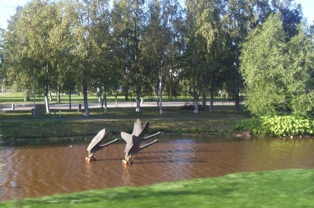 Лебеди... улетающие на юг?..