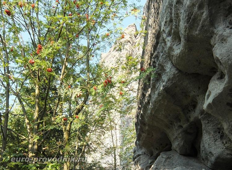 Волнообразные скалы