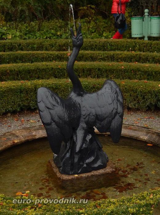 Лебедь Хоэншвангау
