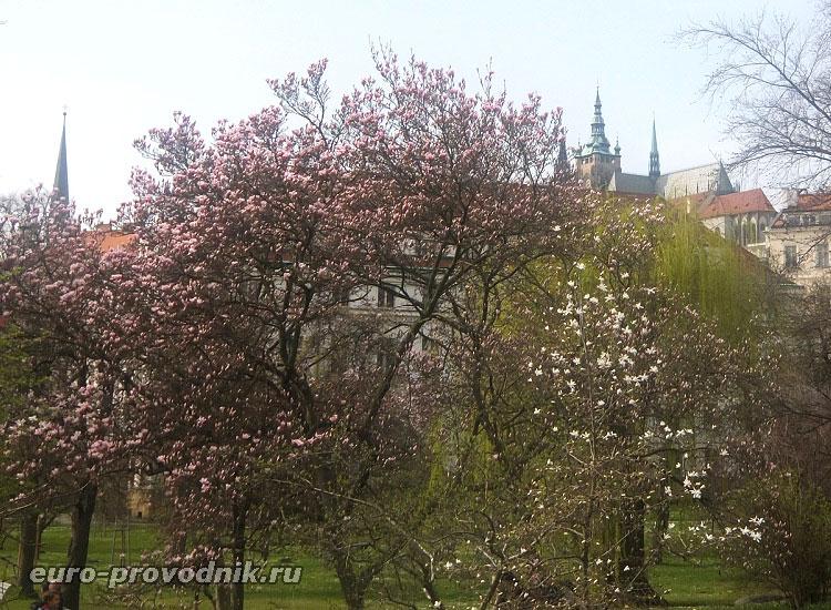 Вояновы сады. Вид на Пражский Град