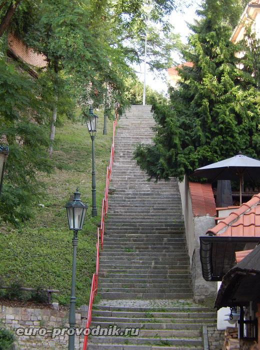 Лестница из Нового Света