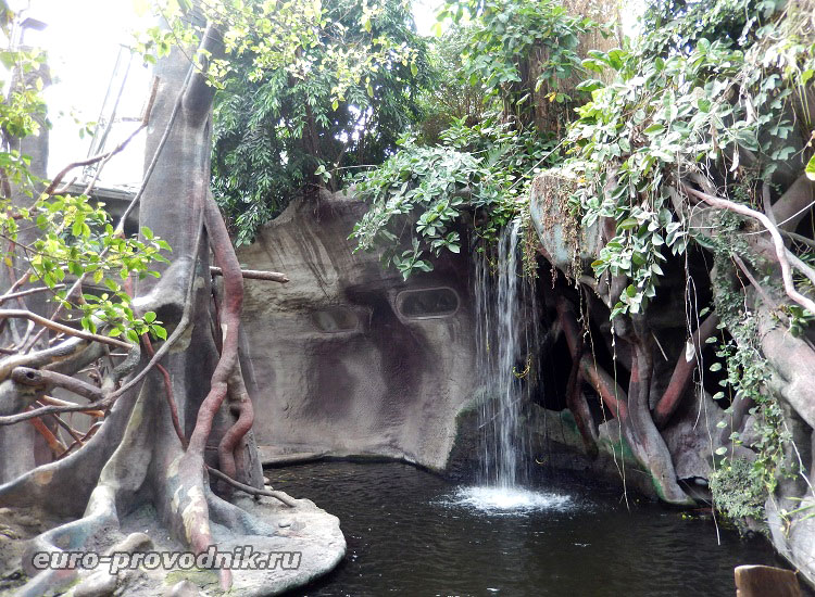 Джунгли в зоопарке Праги