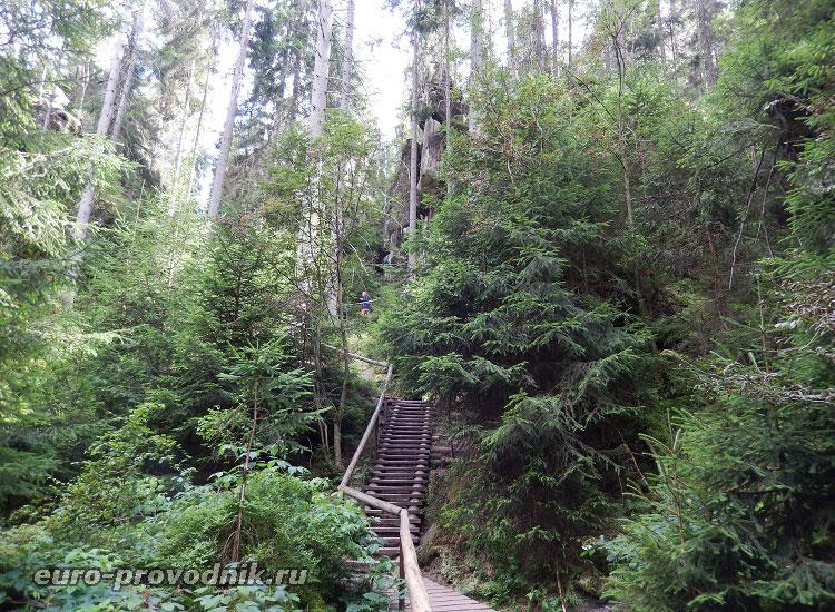 Лестницы на маршруте