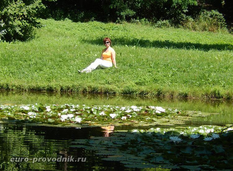 У озера в парке Лоучень
