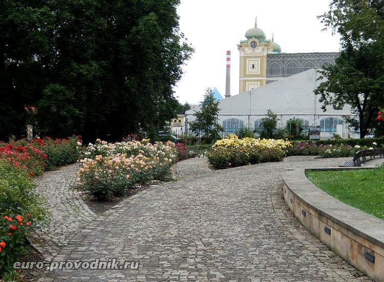 Розарий парка