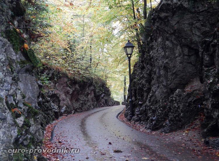 Прогулка к в баварских Альпах
