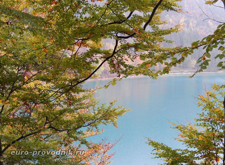 Озеро Альпзее в Баварии