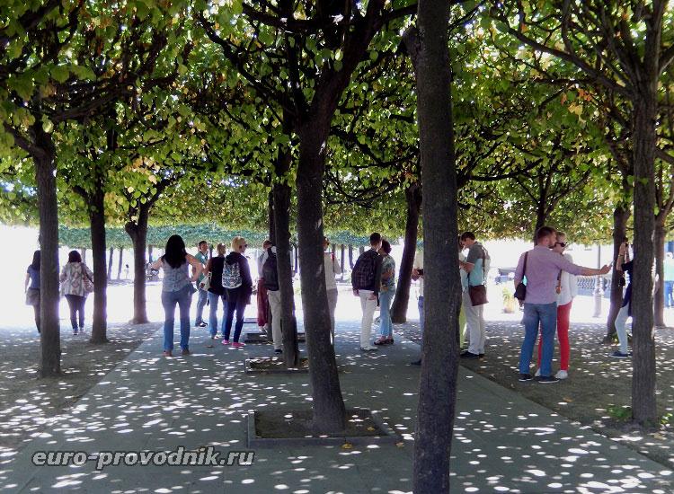 Мини-парк на террасе