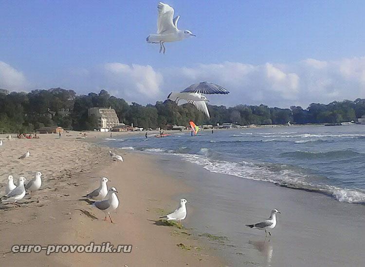 Пляж курорта Китен