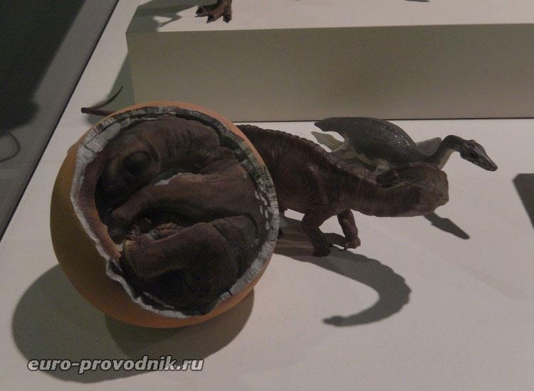 Детеныш динозавра в яйце
