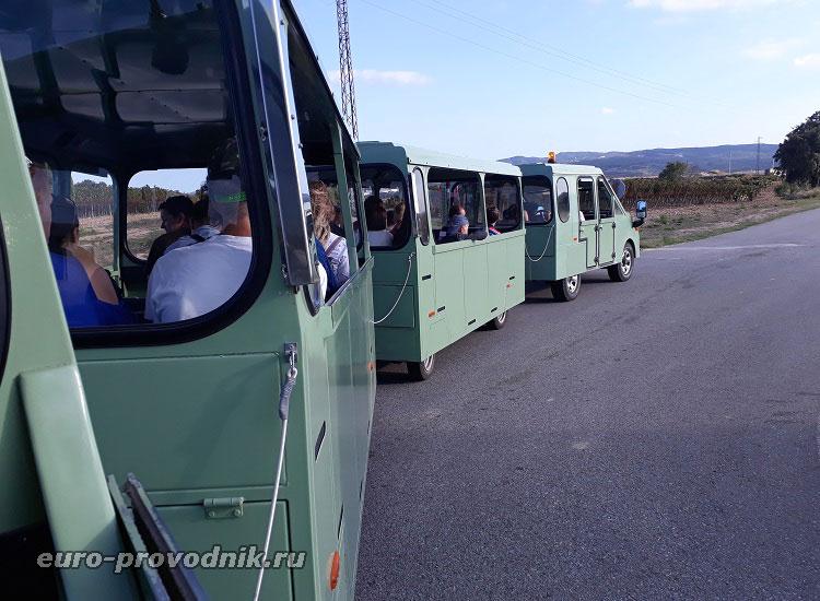 Экскурсионный транспорт на винодельне