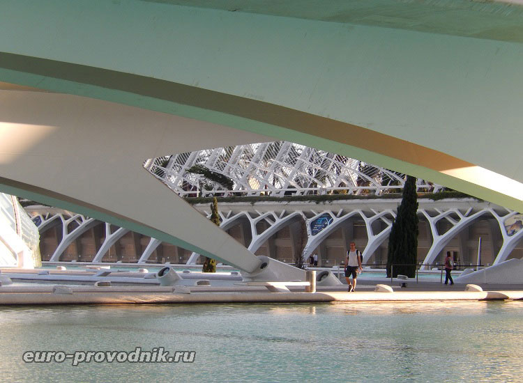 Гармония под мостом