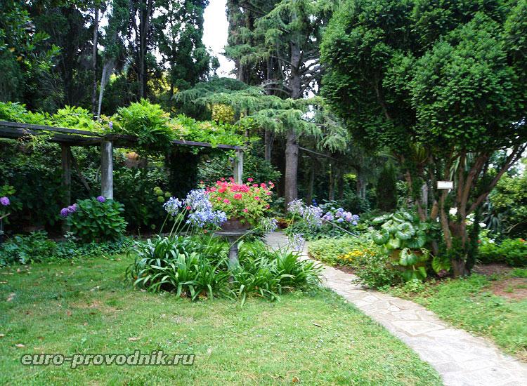 Сад виллы Сан Микеле
