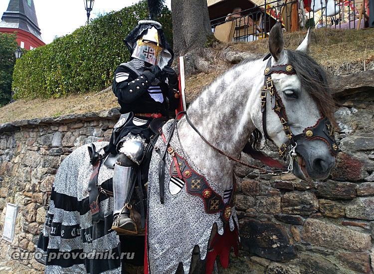 Чешский рыцарь