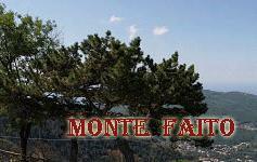 miniMonteFaito