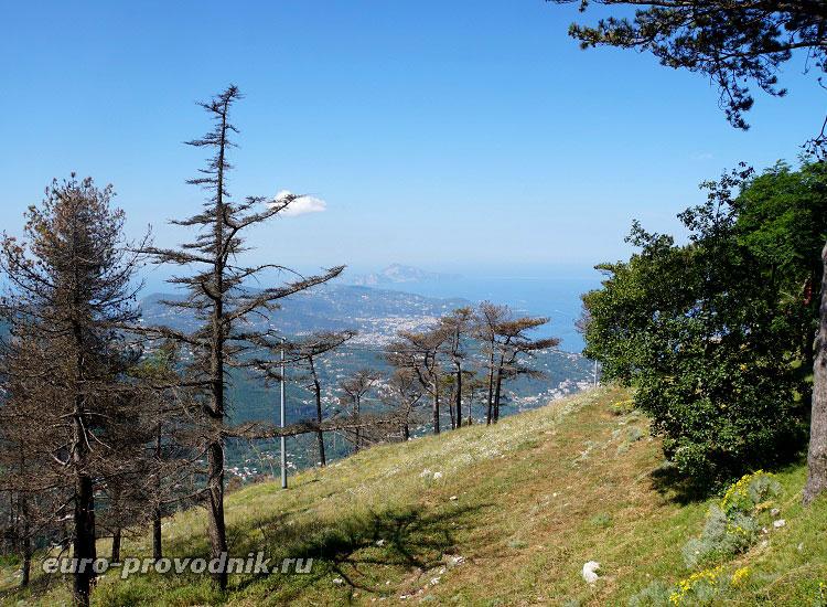 Прогулка по Монте Фаито