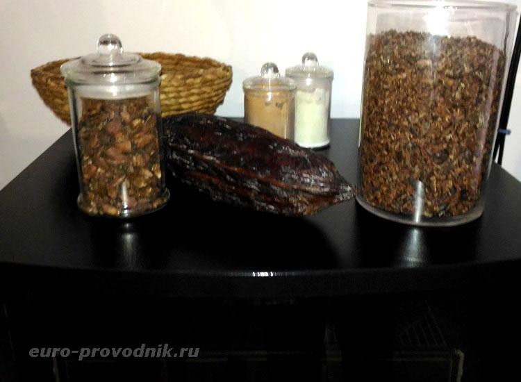 Какао-бобы и перья