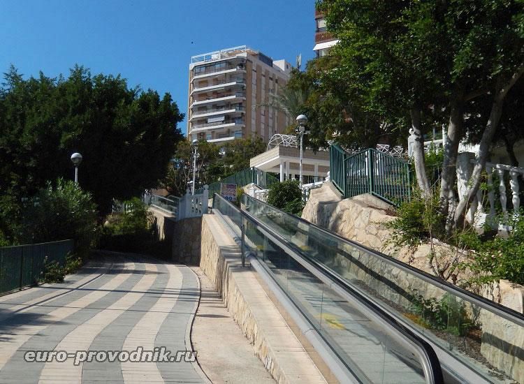 Движущиеся дорожки в парке