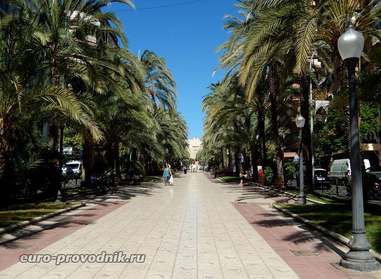 Пальмовый бульвар